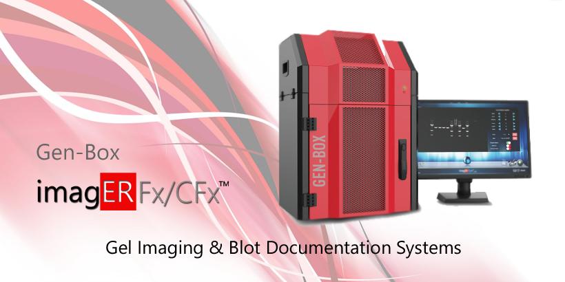 er biyotek, erbiyotek, gen-box, genbox, imager, western blot, imager fx, imager Cfx, imagER, imager eyes, jel görüntüleme sistemi, gel imager, imagER CFx mini, gen-box imager fx mini, Biyoteknoloji, Biotechnology, ER Biyotek, ER Biotech, biyo-görüntüleme, UV görüntüleme, kemilüminesan görüntüleme, floresan görüntüleme, uv görüntüleme, agaroz jel görüntüleme, western blot, ECL, ECL Plus, chemi imager, kemilüminesans görüntüleme, yerli üretim, UV lamba, 302nm lamba, 365nm lamba, 254nm lamba, transilüminatör, moleküler biyoloji ve genetik bölümü, Türkiye, Turkey, made in Turkey, yerli üretim, yerli ve milli, blot, western blot, gel doc, gel imager, gel imaging system, uv imager, etbr imager